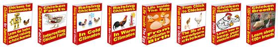 Build your own chicken coop in 3 days.