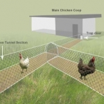 Weekly Roundup – Fruit Tree Swales and Chicken Tunnels