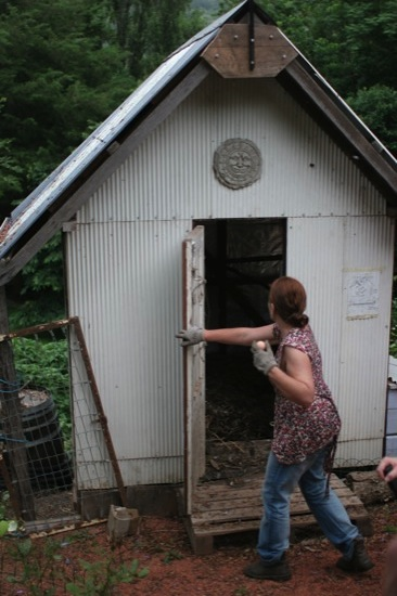Permaculture chicken house with door open