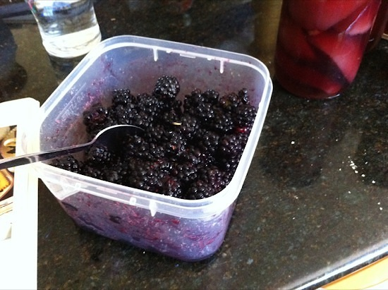 Fresh picked blackberries