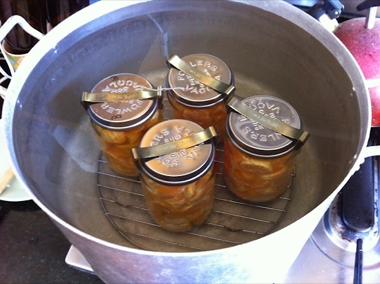 Preserving mandarins